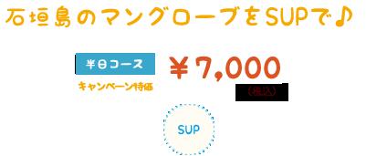 石垣島マングローブSUP