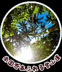 南国ジャングル