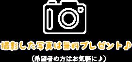 写真プレゼント